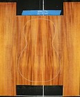 Honduras Mahogany Log 541 B/S PS Set 4