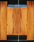 Honduras Mahogany Log 541 B/S PS Set 21