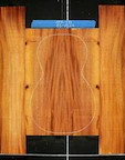 Honduras Mahogany Log 541 B/S PS Set 22
